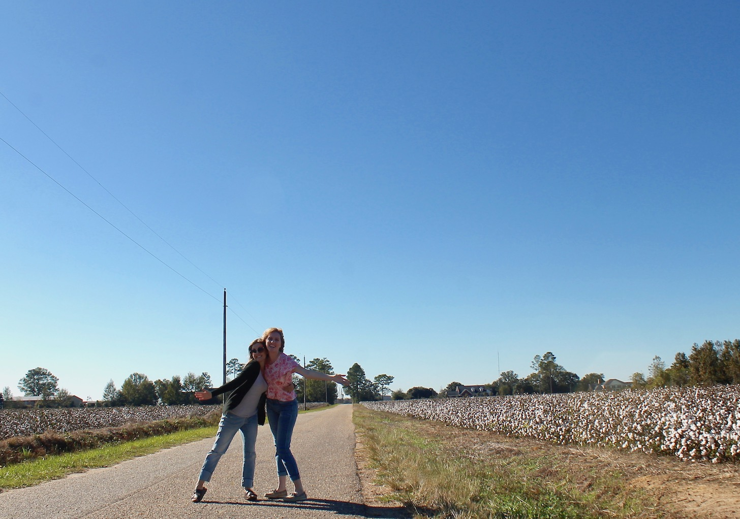 Alabama's cotton fields.